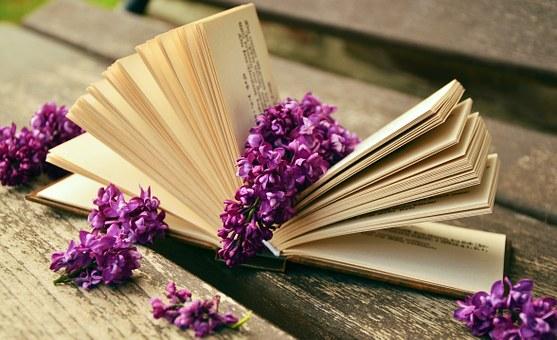 book-759873__340