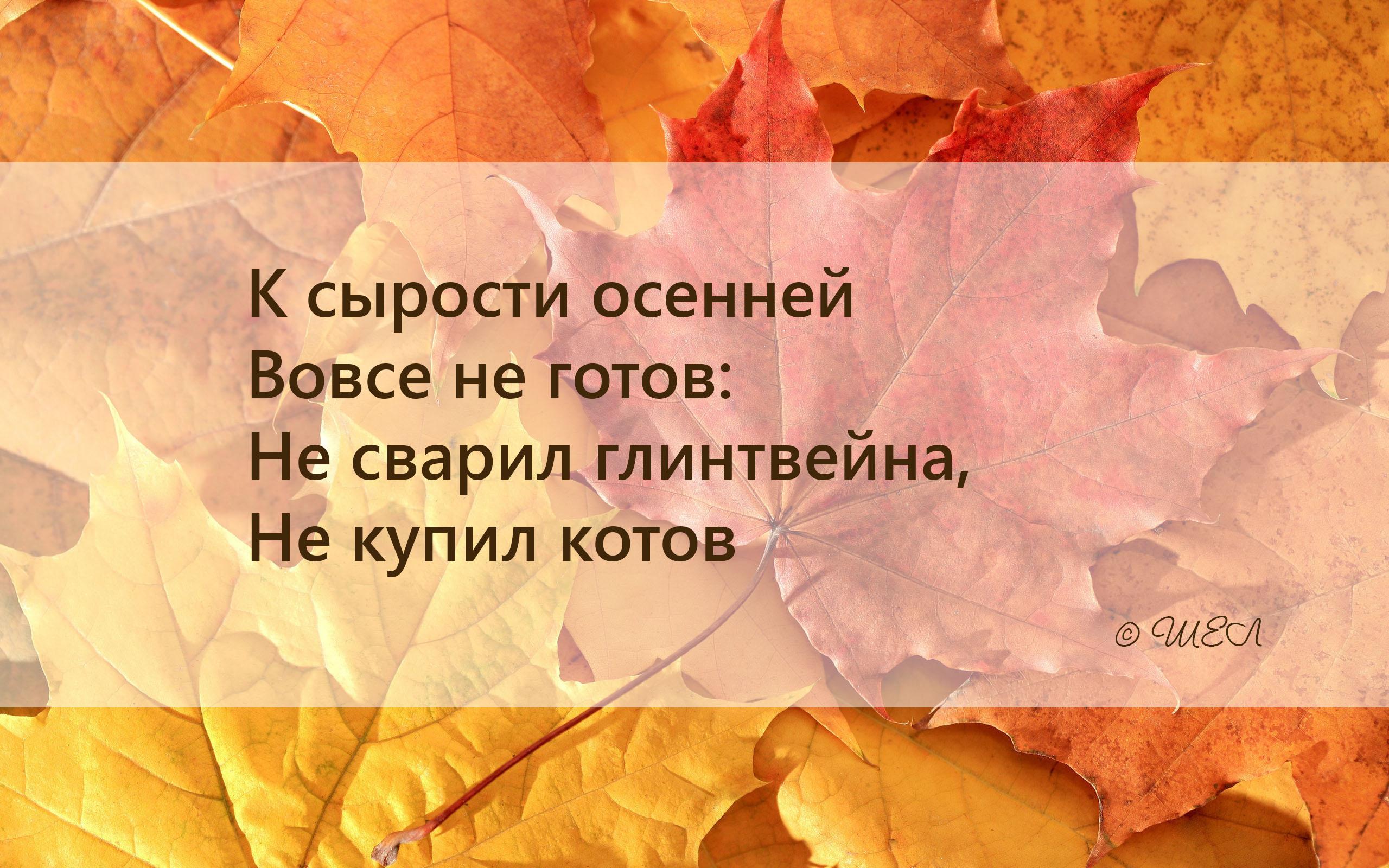 осень №1