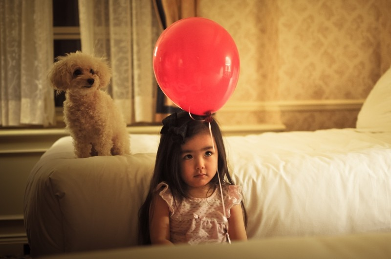 child-girl-balloon-dog-puppy-female-portrait1